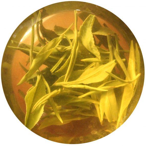 Грузинский зелёный чай Georgian green tea